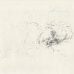 LARROQUE 2014-04-12-portrait-sleeping.jpg