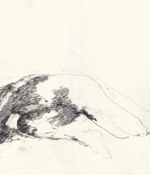 2014-10-041-nu1